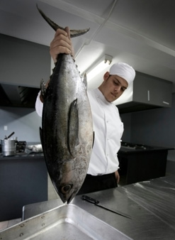 tuna with chef