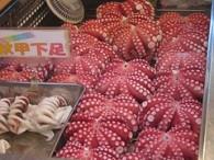 Preparing Octopus (Tako) for Sushi